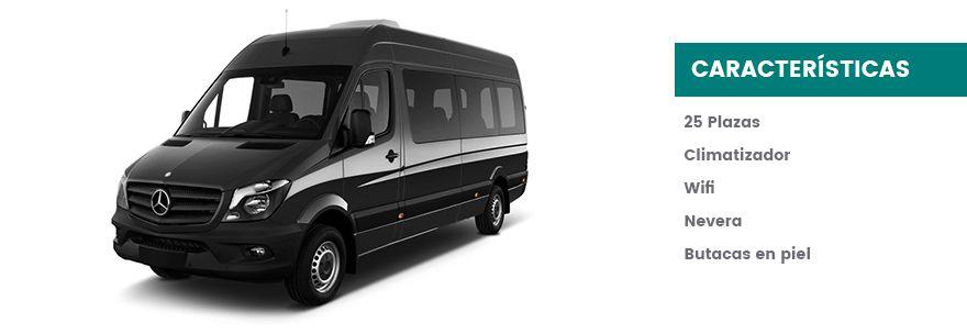 Inicio - microbus 1